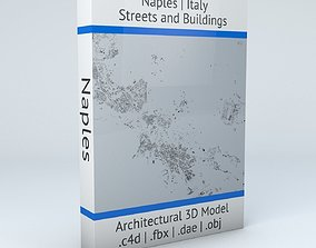 Naples Downtown Area and Scampia Streets and 3D model