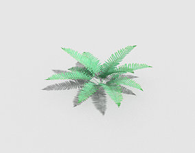 3D asset low poly fern