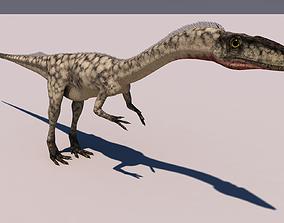 Coelophysis Dinosaur dinosaur 3D model