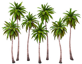 Palms low poly set 1 3D model