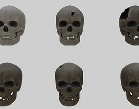 Low Poly Skull Collection With PBR Materials 3D model 2