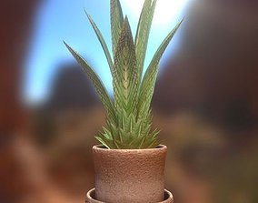 3D asset Indoor Pot Plant 3