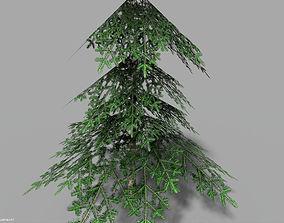 3D asset low poly pine 1