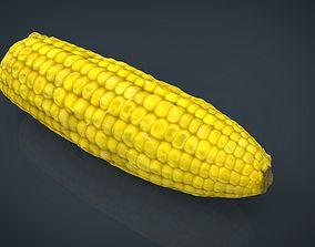 Ear of Corn 3D model