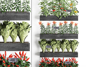 3D model Decorative plants for the kitchen on wooden box