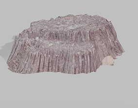 Realistic scanned optimized old stump 3D model