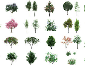 3D 60 Cutout Trees Collection