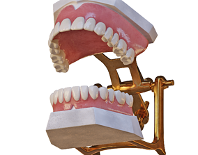 Dental Prosthesis in Articulator 3D