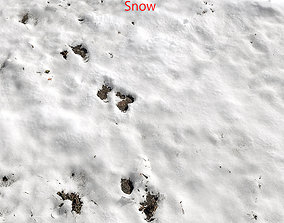 Snow ground Scan 10k 3D model
