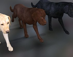 Big dog 3D asset