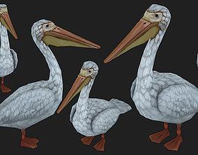pelican 3D asset VR / AR ready