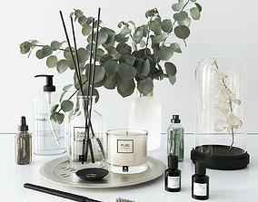 Bathroom set with eucalyptus 3D