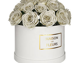 3D White roses in box