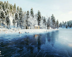 Cover 72H Cabin - SNOW Scene 3D