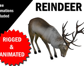 3D model Reindeer RIgged and Animated