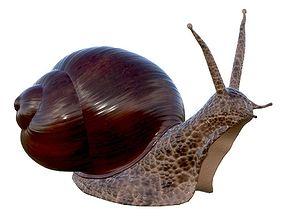 3D PBR snail