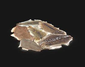 Orc Hunter Primal Deer Stag Skin Leather Carpet 3D model 3