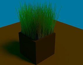 3D model outside Grass