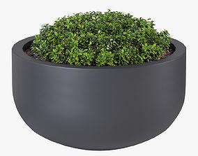 City bowl S 3D model