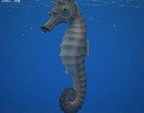 Seahorse Hippocampus Kuda 3D asset