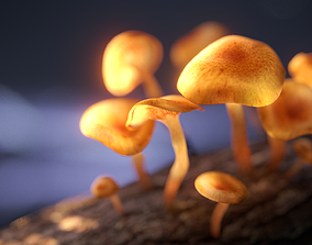 3D Magic Mushrooms