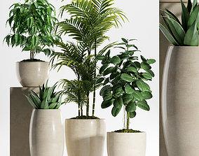3D model Plants 218