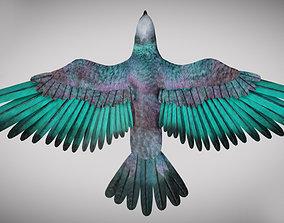 Pigeon 3D asset