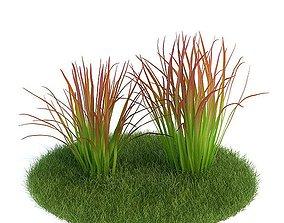 3D Tall Green Grass