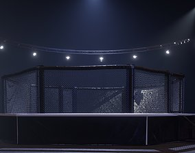 MMA fighting octagon arena with lights 3D model game-ready