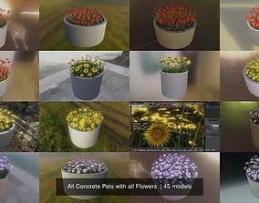 3D model All Concrete Pots with all Flowers