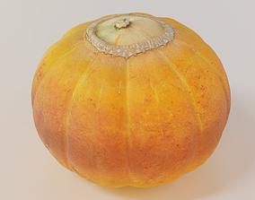 Pumpkin 3D model PBR
