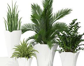 Plants collection 362 3D