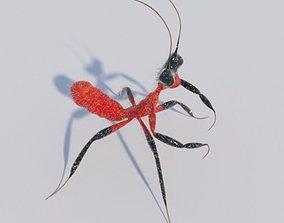 Kung Fu Mantis 3D model