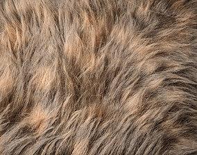 3D Fur Ornatrix Redshift