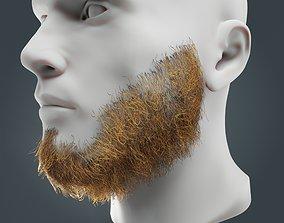 3D model Beard RealTime 12 Version 2 Low Poly