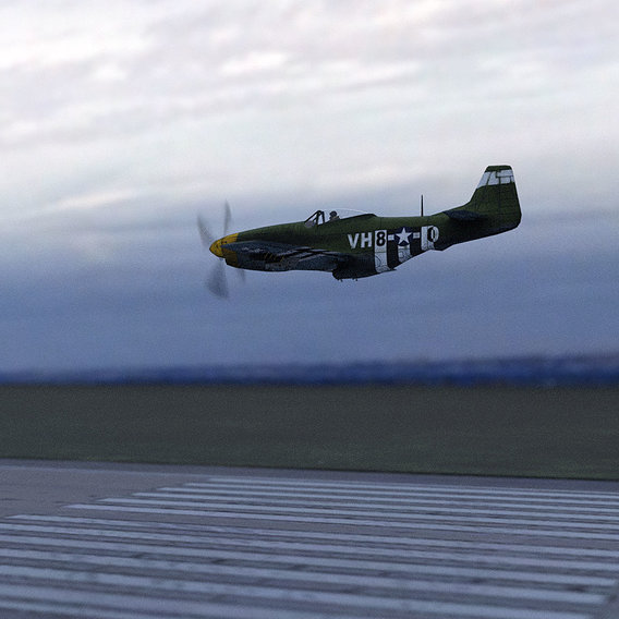 P-51 Mustang Salvage