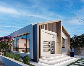 3D Modern style villa design