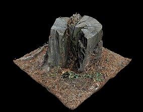 3D model Trunk trunk