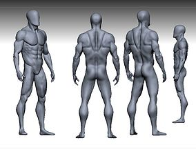 male anatomy modeler realtime