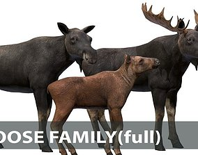 MOOSE FAMILY 3D asset