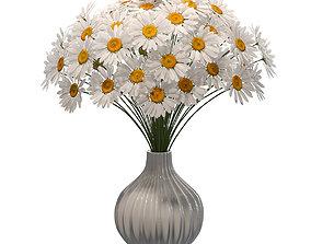 Chamomile in vase 3D model
