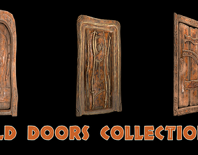 Old doors collection 3D model