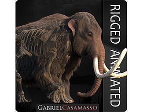 3D Woolly Mammoth - Mammuthus primigenius Anatomy Pack