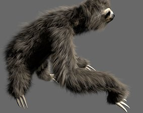 3D asset animated Sloth