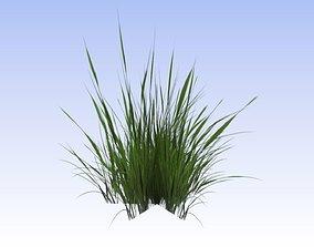 3D model Grass lowpoly free