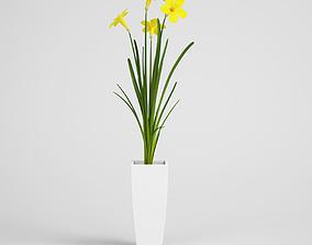 CGAxis flower 3D