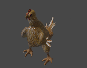 3D model animated Chicken