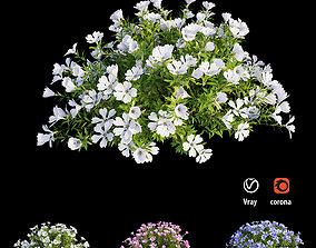 3D model Plant Flower set 09