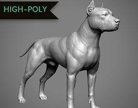 Pitbull High-Poly 3D printable model