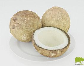 decorations Coconuts 3D Model